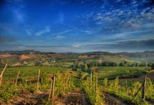 Chianti Region Wine Tasting Tour