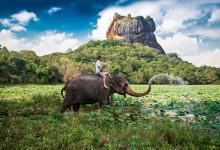 Il meglio dello Sri Lanka